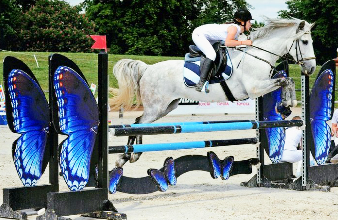 CSO obstacle concours